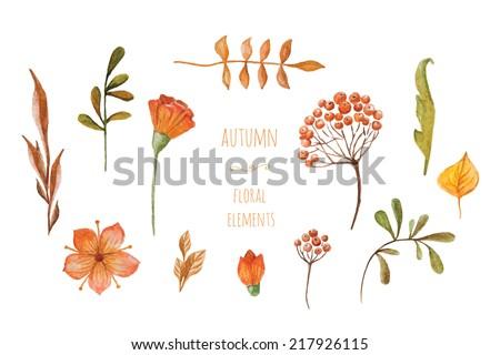watercolor autumn floral elements. hand-drawn set - stock vector