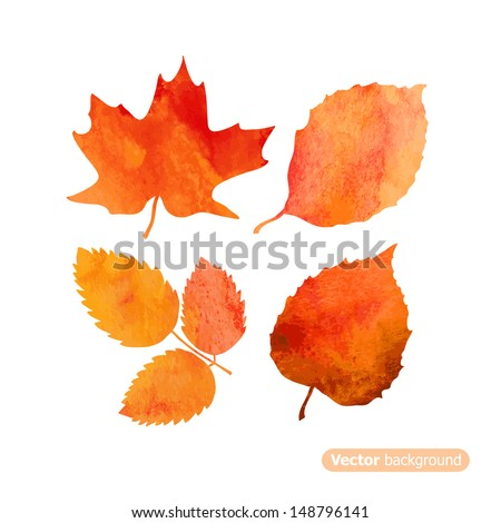 Watercolor autumn leaf set. Vector illustration - stock vector