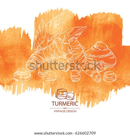 Watercolor background with turmeric: turmeric root and leaves. Hand drawn.
