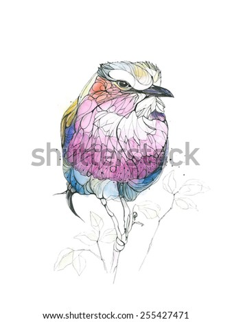 Watercolor bird. Vector illustration - stock vector