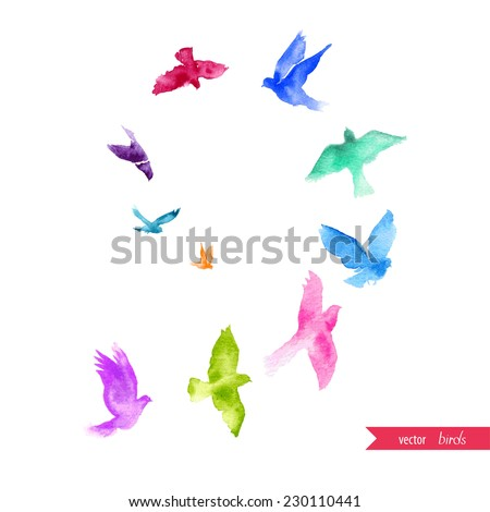 Watercolor birds. - stock vector