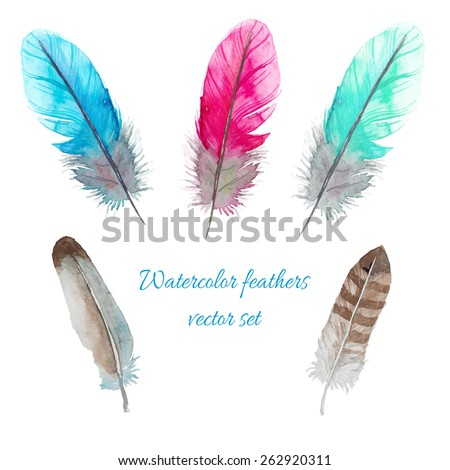 Watercolor birds feathers set. Hand painted artistic elements. Vector illustration - stock vector