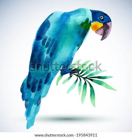Watercolor blue parrot  isolated on white background - stock vector