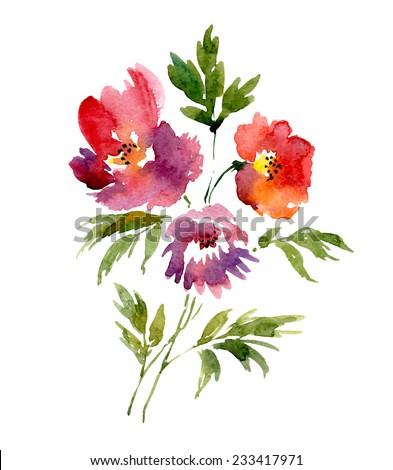 Watercolor bouquet of peonies. Vector illustration - stock vector