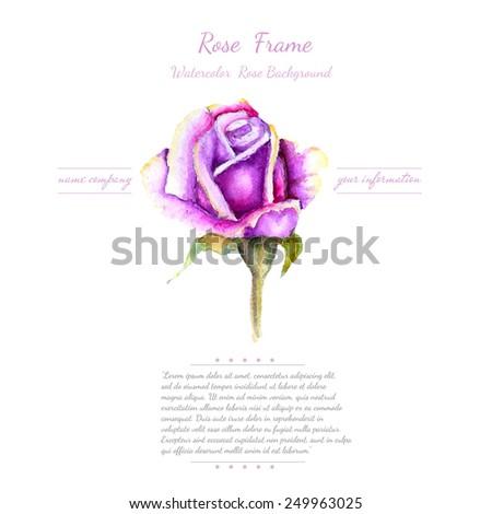 watercolor bud of rose in the middle white background - stock vector