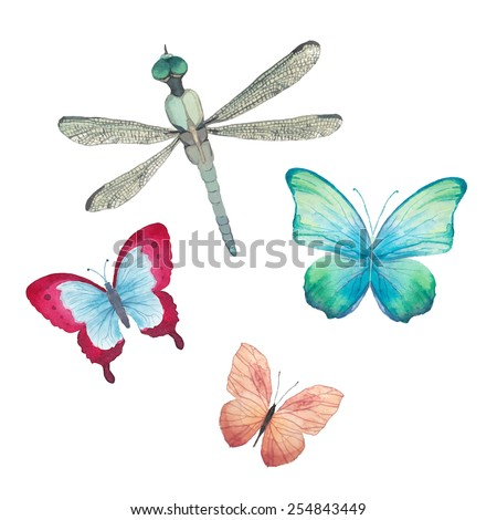 Watercolor butterflies and dragonfly set. Vector artistic insects in vector - stock vector