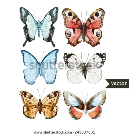 watercolor, butterfly, set, nature - stock vector