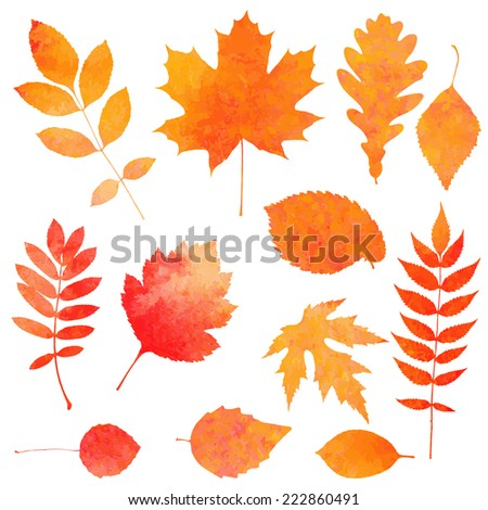 Watercolor collection of beautiful orange autumn leaves isolated on white background - stock vector