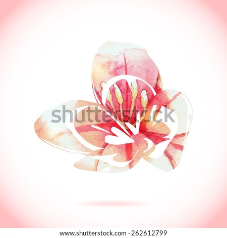 Watercolor colorful exotic flower pattern. Hand drawn plant aqua color wet template on white. Vector isolated watercolor painting with volume shadows and lights.