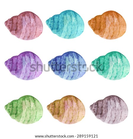Watercolor colorful sea shells set isolated on white background. Hand painting on paper