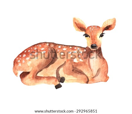 Watercolor deer over white, Vector