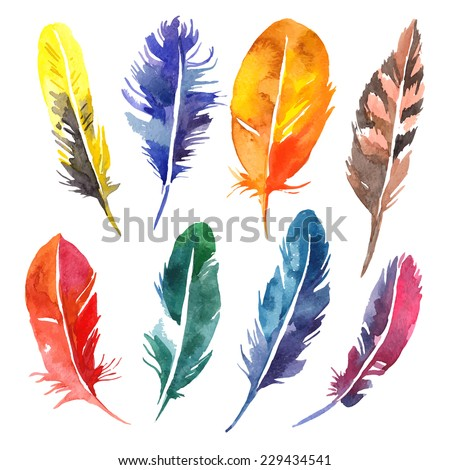 Watercolor feather set. Hand drawn vector illustration  - stock vector
