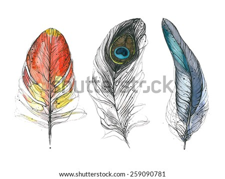 Watercolor feather. Vector illustration - stock vector