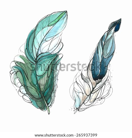 Watercolor feathers. Vector illustration - stock vector