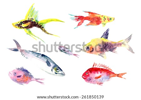 Watercolor fishes collection on white background. Vector fish set. - stock vector
