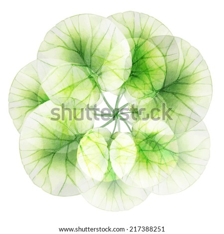 Watercolor floral round patterns. - stock vector