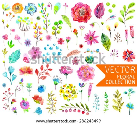 Watercolor flowers collection for different design over white, Vector - stock vector