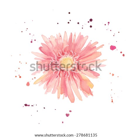 Watercolor gerbera. Single flower with paint drops and dots hand drawn. Vector botany illustration - stock vector