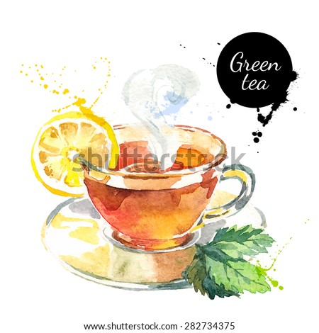 Watercolor hand drawn painted tea vector illustration. Menu design - stock vector