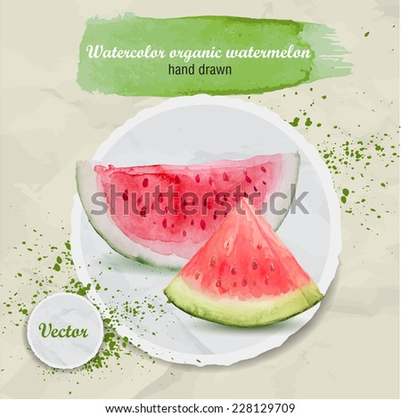 Watercolor hand drawn pieces of watermelon on round paper background. Watercolor drops. Organic food vector illustration. - stock vector