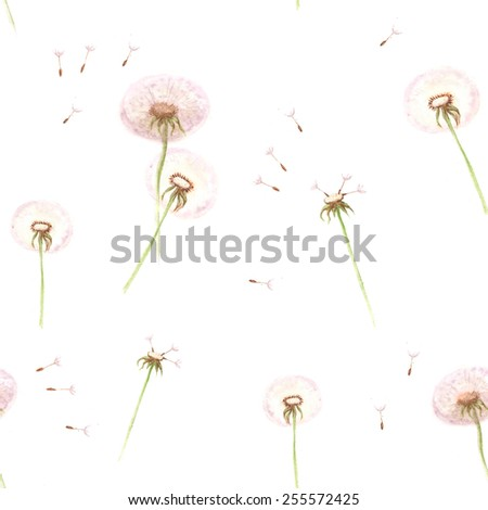 Watercolor hand drawn seamless pattern with spring tender flowers - dandelions on the white background