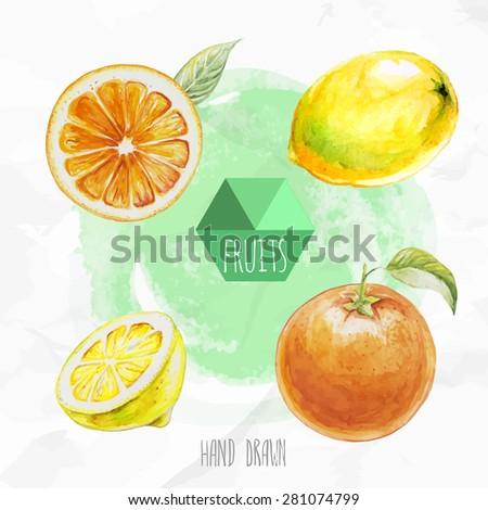 Watercolor hand painted fruit set. Eco food illustration. Watercolor green background. Ripe orange fruit and lemon. Citrus fruits. - stock vector