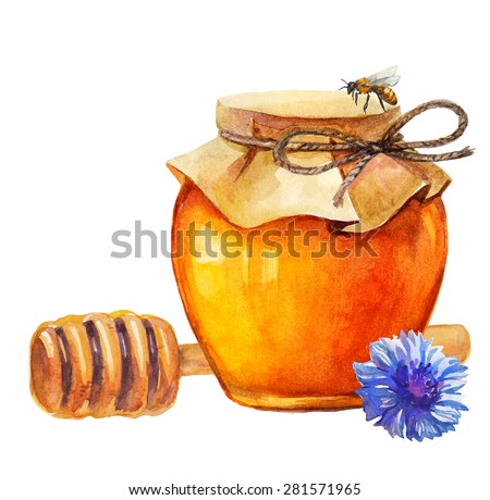 Watercolor Honey jar and honey stick and cornflower over white, Vector
