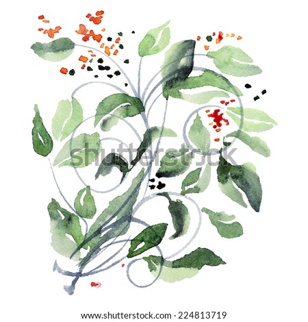 Watercolor illustration of branch with  green leaves and flowers. Vector.