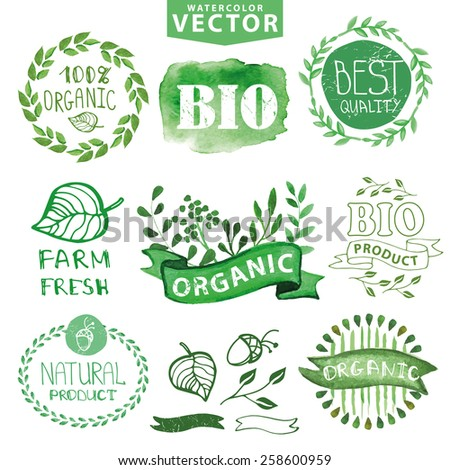 Watercolor logotypes set.Badges, labels,ribbons,plants elements,wreaths and laurels.Organic,bio,ecology natural design template.Hand drawing painting.Vintage vector,green colors - stock vector