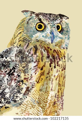 watercolor painting of bird, owl. I am author of this illustration - stock vector