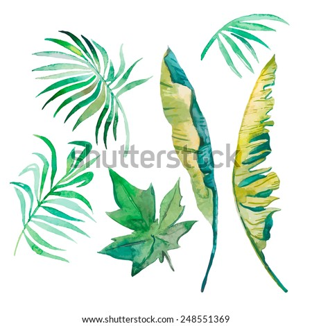 Banana Leaf Watercolor Watercolor Palm Leaves Banana