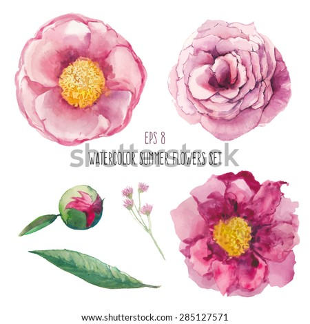 Watercolor peony, wild flowers and roses elements set. Artistic leaves, flowers and branch. Vector hand drawn botanical illustration. Realistic isolated objects on white background - stock vector
