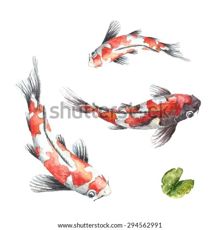Watercolor red koi carps. Isolated hand draw fishes. Vector illustrations.