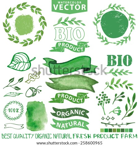 Watercolor set.Badges, labels,ribbons,plants elements,wreaths and laurels.Organic,bio,ecology natural design template.Hand drawing painting.Vintage vector,green colors - stock vector