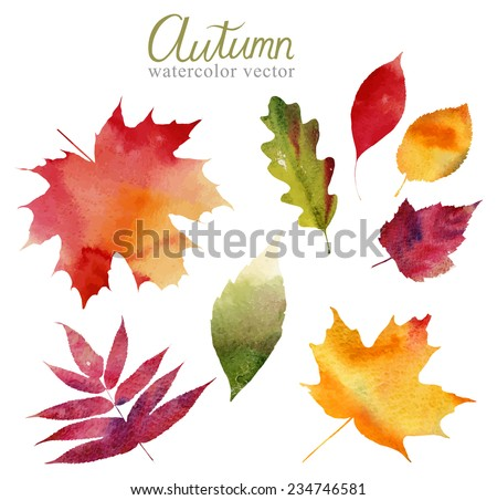 Watercolor set of beautiful colourful autumn leaves in vector - stock vector
