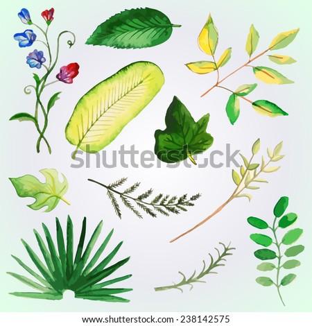 watercolor sheet set - vector illustration - stock vector