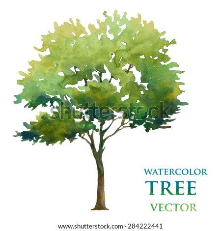 Watercolor tree - stock vector