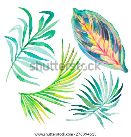 Watercolor tropical leaves isolated on white.Vector for your design. - stock vector