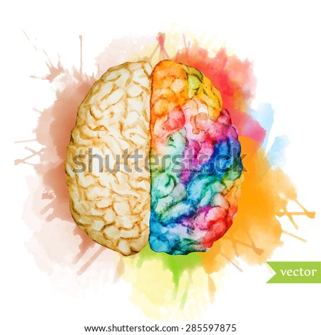 watercolor vector illustration colored brain, two different hemispheres on the background of bright spots - stock vector