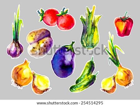 watercolor vegetables - stock vector