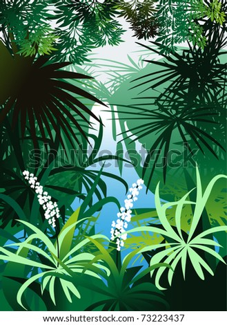 Waterfalls are often in dense tropical jungle - stock vector