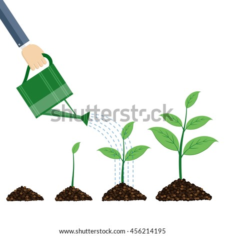Watering can and plants on white background.