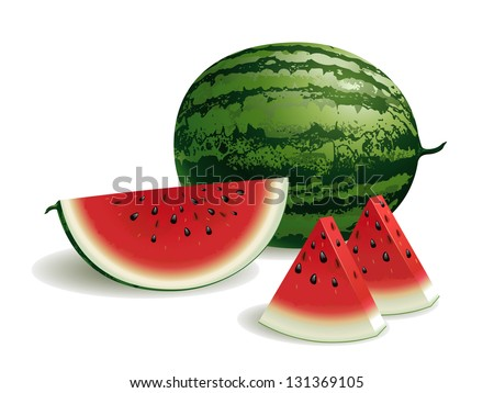 Watermelon - stock vector
