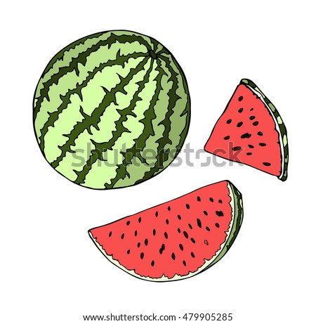Watermelon berry vector Illustration. Object isolated on black background. Doodle style. Cloth design, wallpaper, wrapping, menu, restaurant,cafe,kitchen,textile,paper, card, invitation,holiday. Eps10