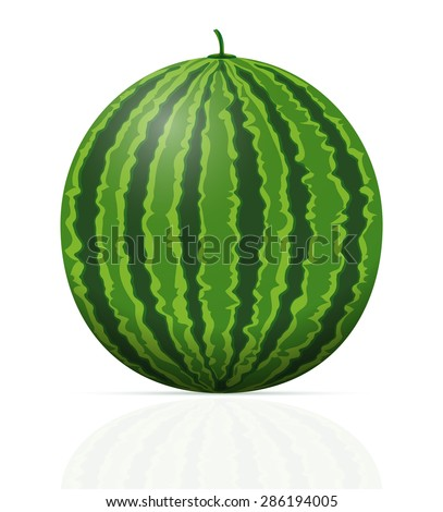 watermelon ripe juicy vector illustration isolated on white background - stock vector