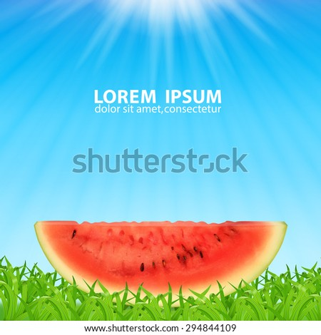 Watermelon slice. Time for a picnic. Summer fruit. High quality vector. EPS10 vector. - stock vector