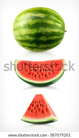 Watermelon vector icons set. Fresh and juicy fruit.