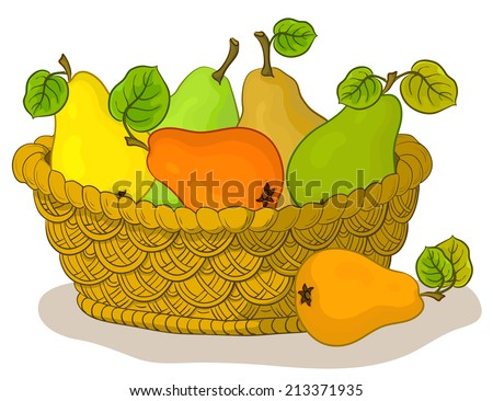 Wattled basket with fruits, sweet pears with green leaves, isolated on white background. Vector - stock vector
