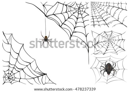 Web and black poisonous spider. Set Halloween accessory. Isolated on white vector illustration