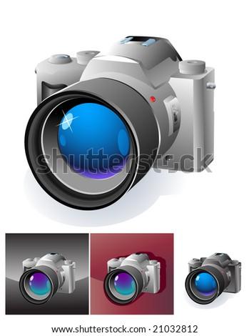 web botton with professional slr camera - stock vector